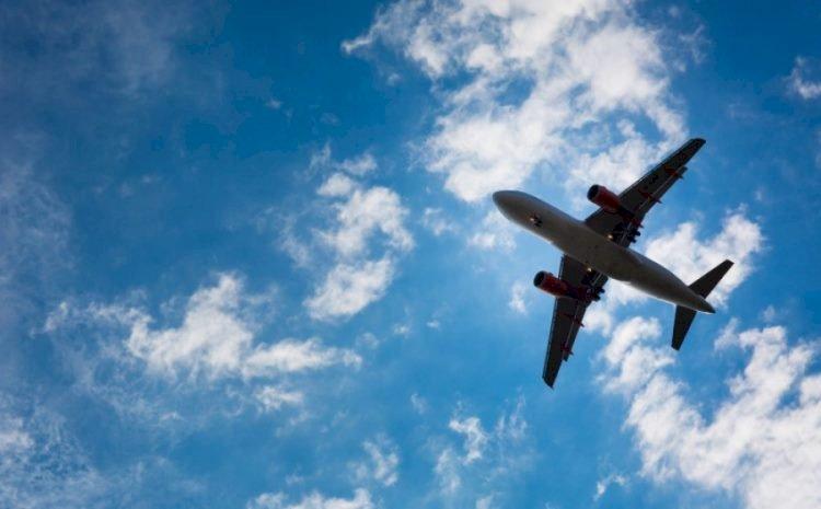 Самолет совершил посадку в Алматы из-за столкновения с птицей