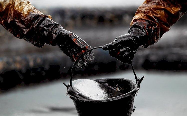 Кто больше всех добывает казахстанскую нефть?