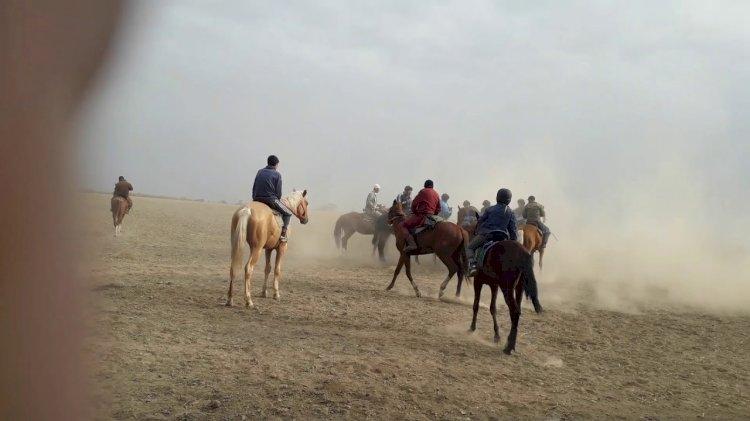 Кокпар в честь сундет-тоя устроили на трассе в Алматинской области