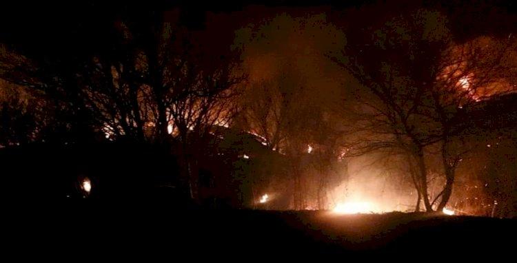 На склоне горы в Алматы горел сухостой