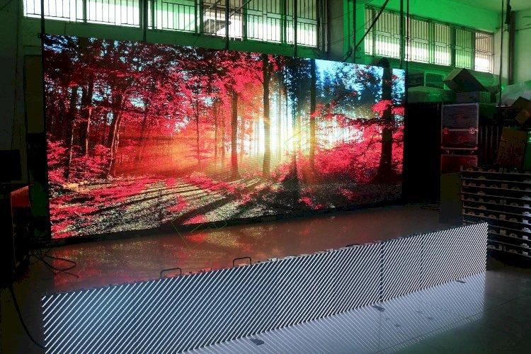 Жители Алматы могут отследить количество высаженных деревьев на LED-экранах