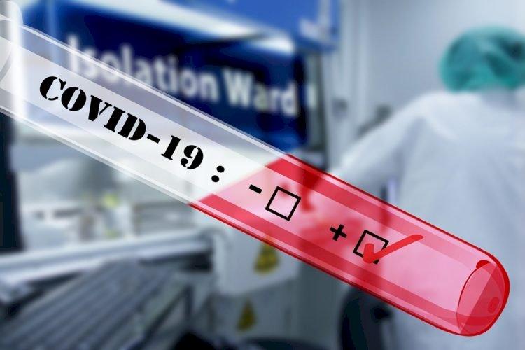 За сутки в РК выявлено более 2700 новых случаев коронавируса