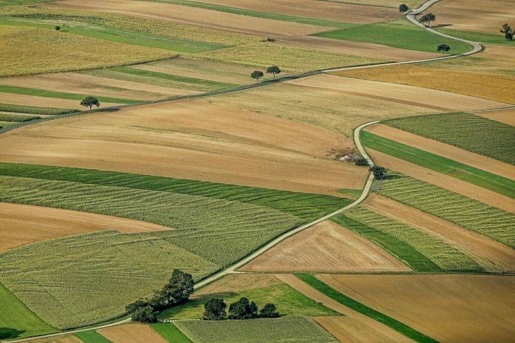 Автоматизировать очередность на получение земельных участков обещают в 2021 году