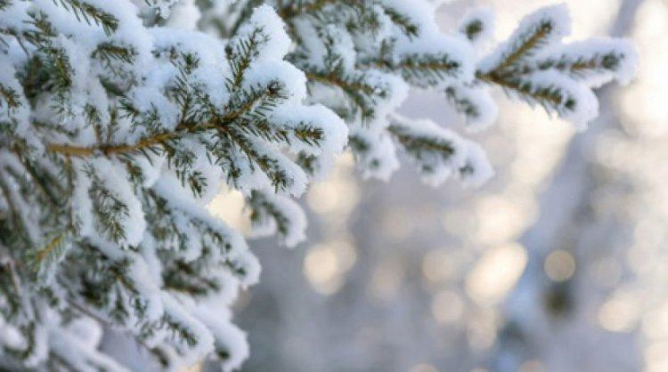Морозные выходные ожидают казахстанцев