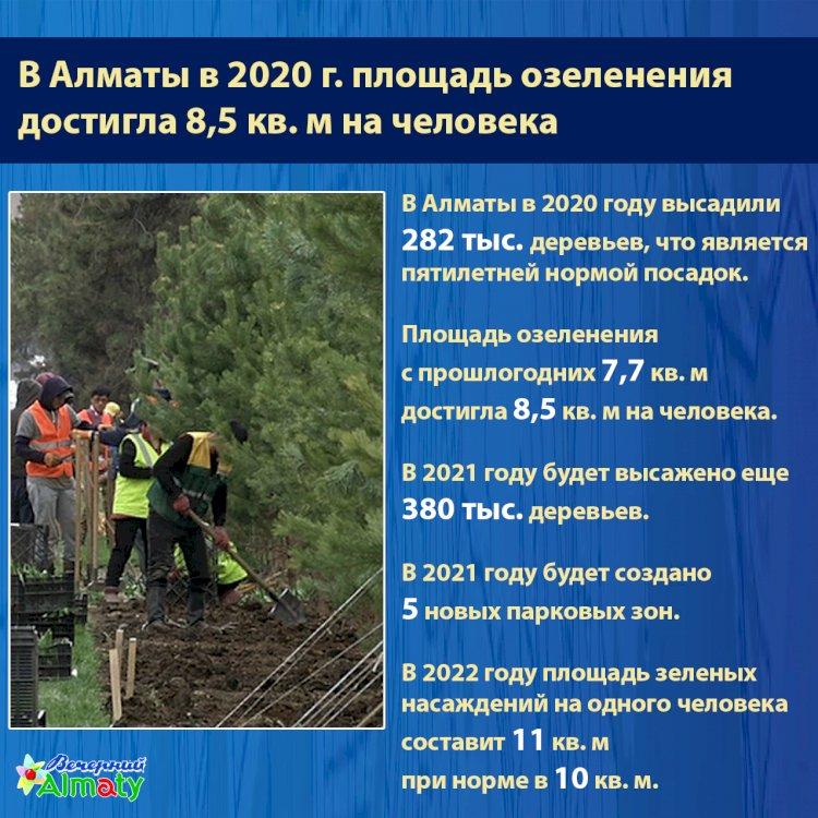 В Алматы в 2020 г. площадь озеленения  достигла 8,5 кв. м на человека