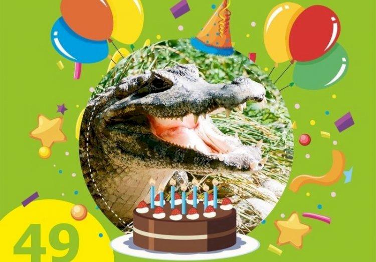 Крокодиловый кайман Зина празднует день рождения в Алматинском зоопарке