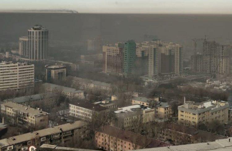 Дежурный по городу 2020: подводим итоги