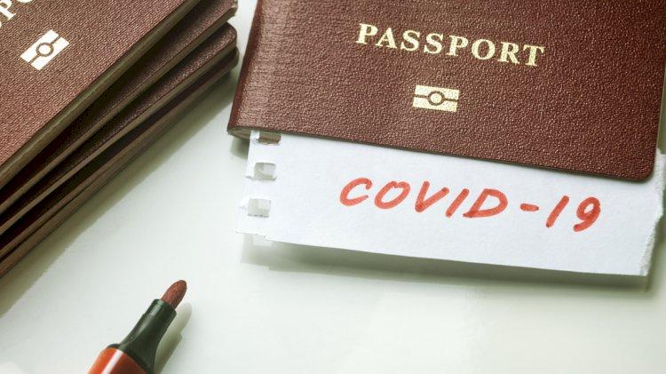 ВОЗ не исключает возможности введения иммунных паспортов для путешествий