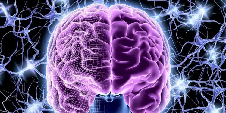 Вакцины против COVID-19 воздействуют на мозг – новый фейк казнета