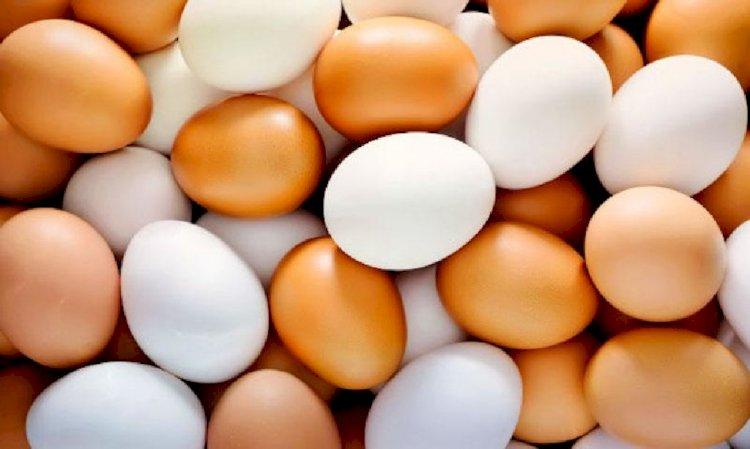 Яйца подорожали на 30%: как птицеводы объясняют рост цен