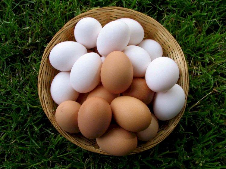 Эксперты подсчитали потребляемое казахстанцами количество яиц