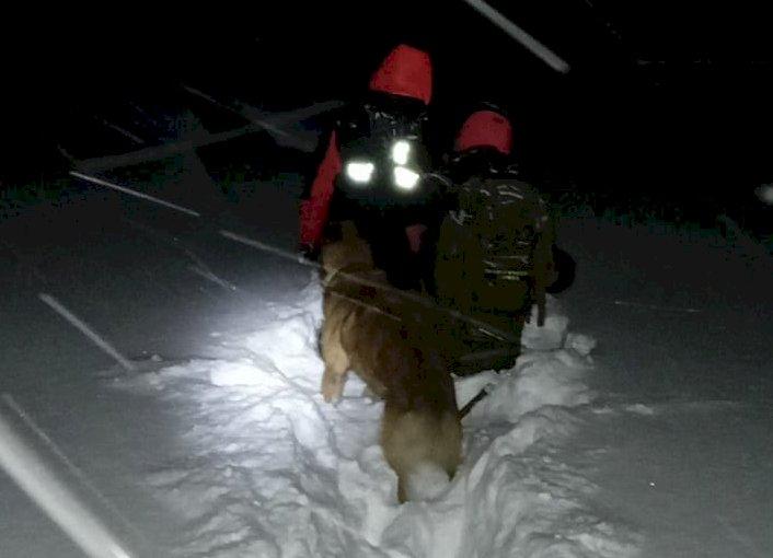 Вторые сутки разыскивают мужчину в горах Алматы