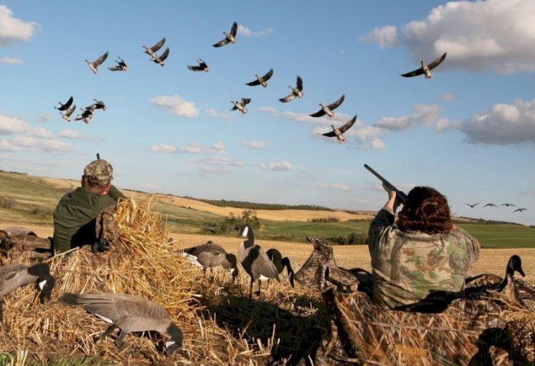 В Минэкологии напомнили об ответственности за нарушение требований правил охоты