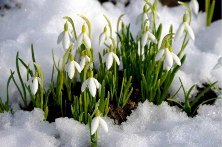 Весна пока откладывается – прогноз погоды на праздничные дни