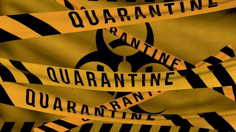Жандарбек Бекшин прокомментировал сообщения об «алматинском» штамме коронавируса