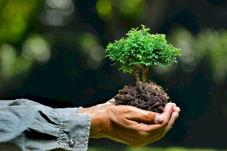 На треть выросли инвестиции, направленные на охрану окружающей среды в Казахстане