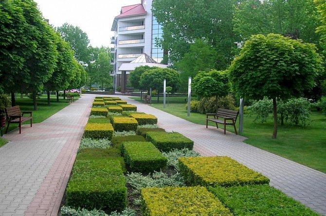 В Алматы создается Садовый кластер
