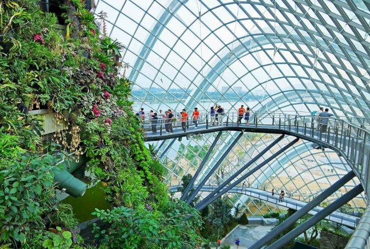 Алматы может стать второй ботанической столицей мира