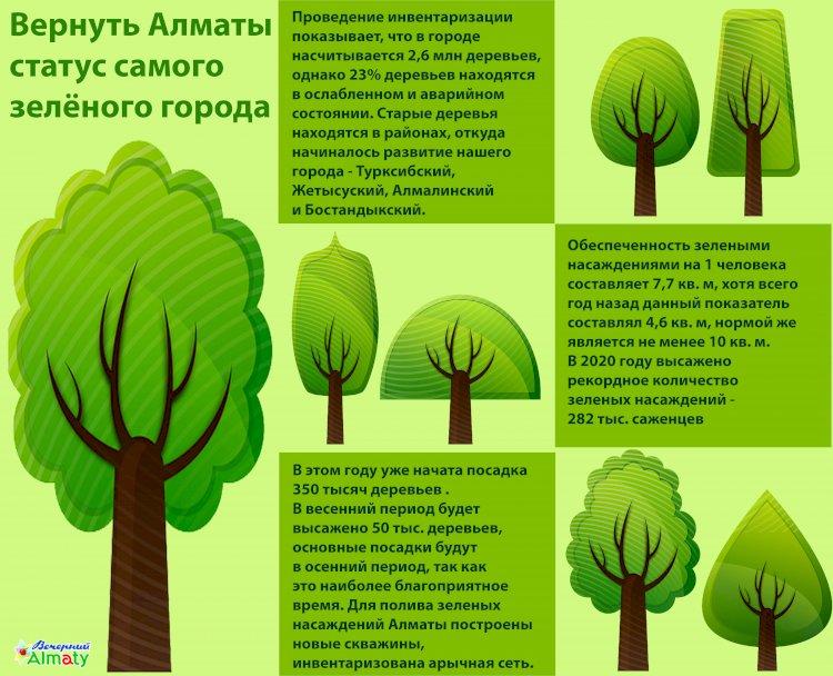 Вернуть Алматы статус самого зелёного города