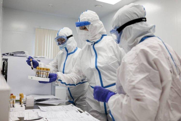 В Британии обнаружили новый штамм коронавируса