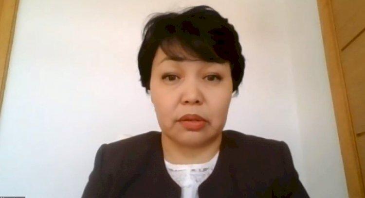 Эльмира Битанова об актуальных вопросах по вакцинации – прямая трансляция