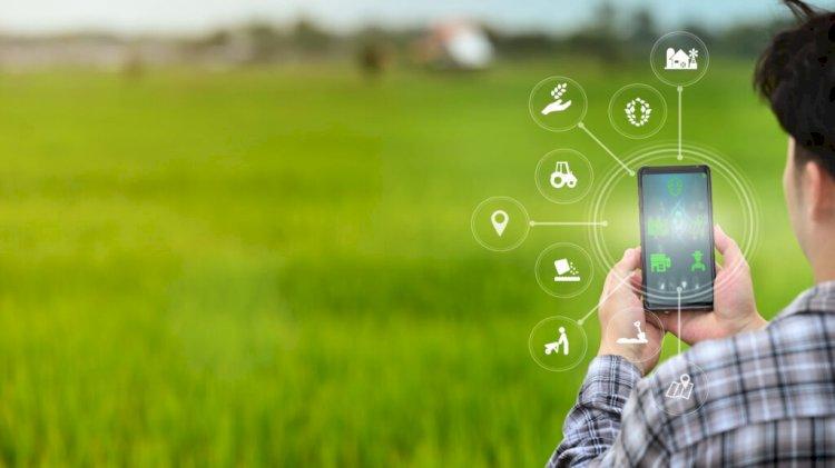 Как ІТ-технологии помогают фермерам Казахстана планировать посевную кампанию