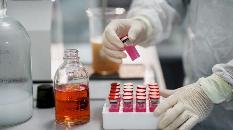 Антиковидную вакцину для животных выпустили в России