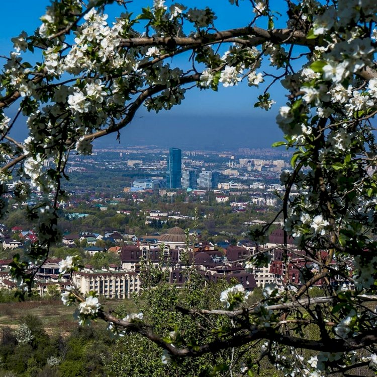 Город преображается – жители Алматы