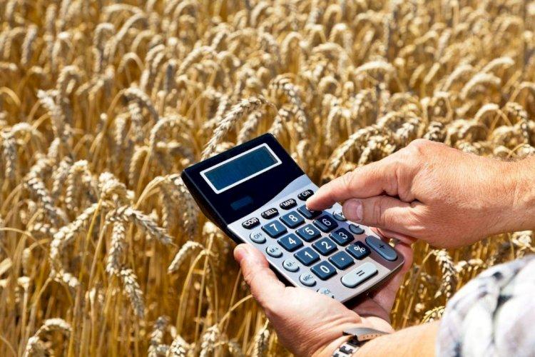 Как стимулируют кредитование сельского хозяйства в Казахстане
