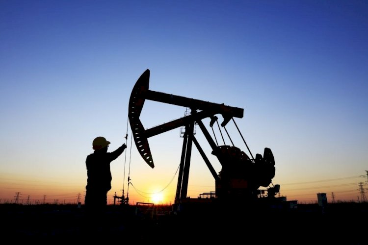Цены на черное золото пошли в рост