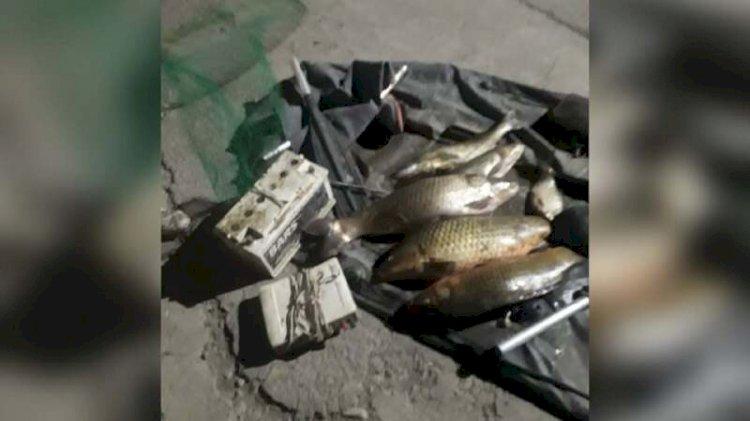Браконьера, глушившего рыбу током, задержали в Алматинской области