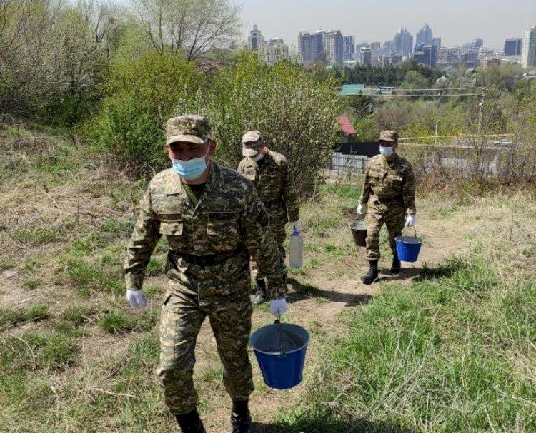 Курсанты Алматинской военно-технической школы внесли вклад в озеленение мегаполиса