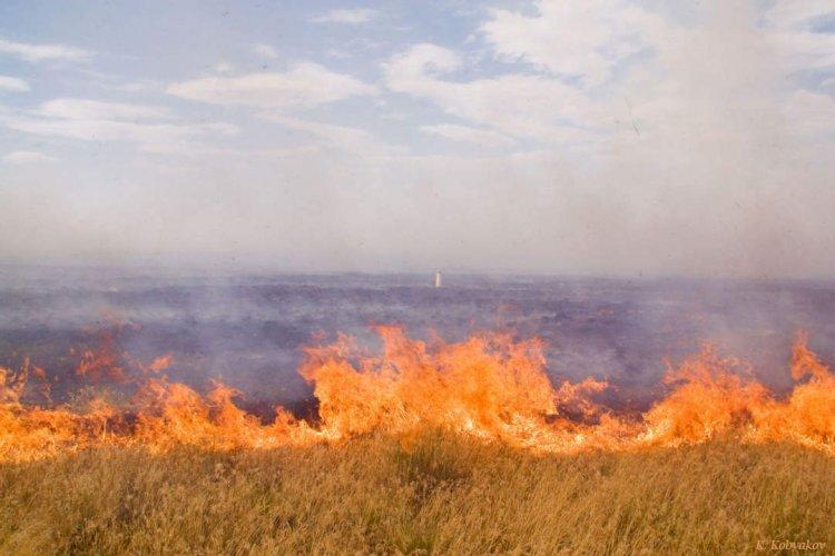 Полицейский предотвратил пожар в селе Бескайнар Алматинской области