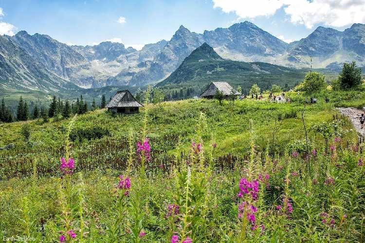 В горах туристы могут получать экстренную помощь