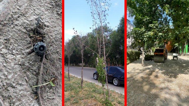 Алматинцы шлют «дежурному по городу» тревожные сообщения