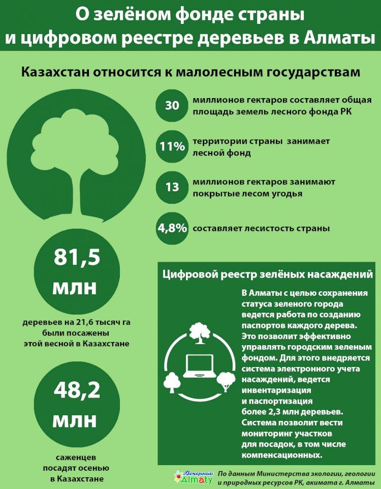 О зелёном фонде страны и цифровом реестре деревьев в Алматы