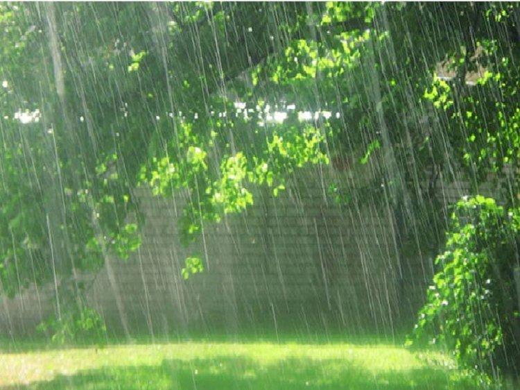 Сильные дожди и грозы ожидаются в Казахстане