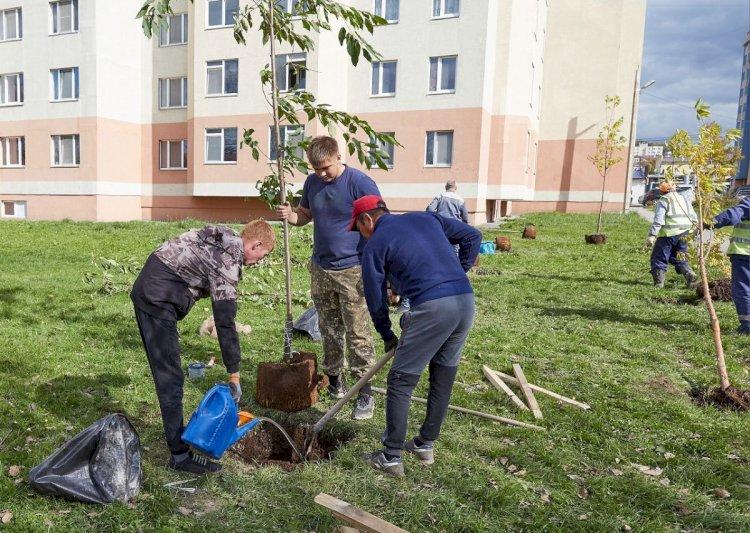 Как общественность Алматы помогает сохранению зеленого фонда города