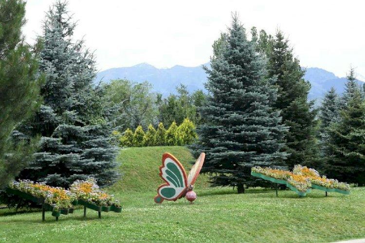 Площадь зеленых насаждений в Алматы планируют увеличить