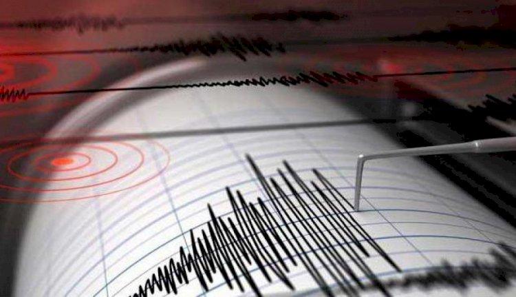 Землетрясение произошло на юге от Алматы