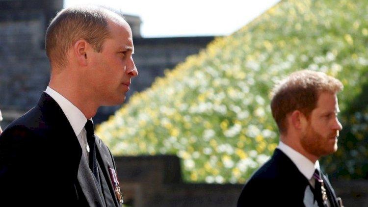 Принцы Уильям и Гарри откроют памятник в честь погибшей матери