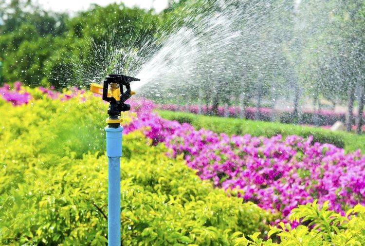 В Алматы усиливается работа по поливу зеленых насаждений