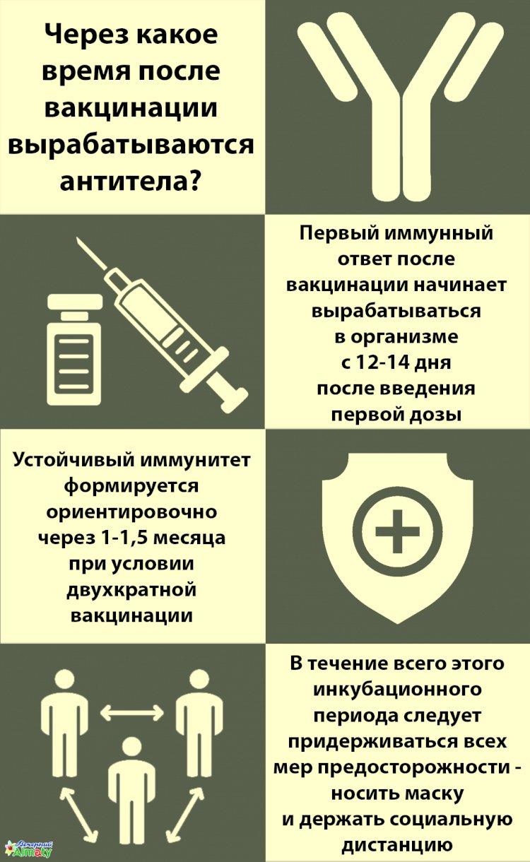 Через какое время после вакцинации вырабатываются антитела?