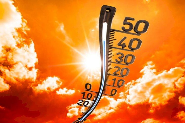 Жара до 43 градусов ожидается в Казахстане на выходных