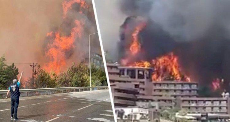 В Турции удалось локализовать 74 очага пожаров