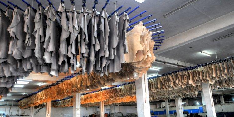 Сколько заработали казахстанские производители на экспорте кожи