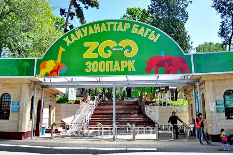 Алматинский зоопарк поздравил жителей с Днем города