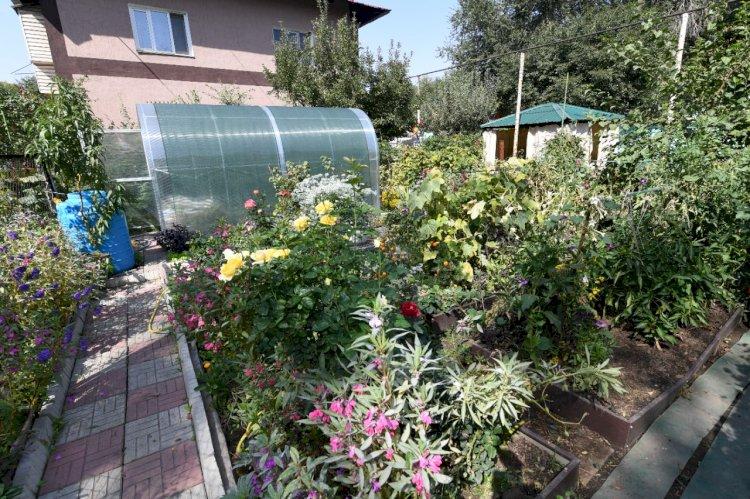 Делать город еще краше: победителям конкурса на лучшее озеленение двора вручили 5 млн тенге в Алматы