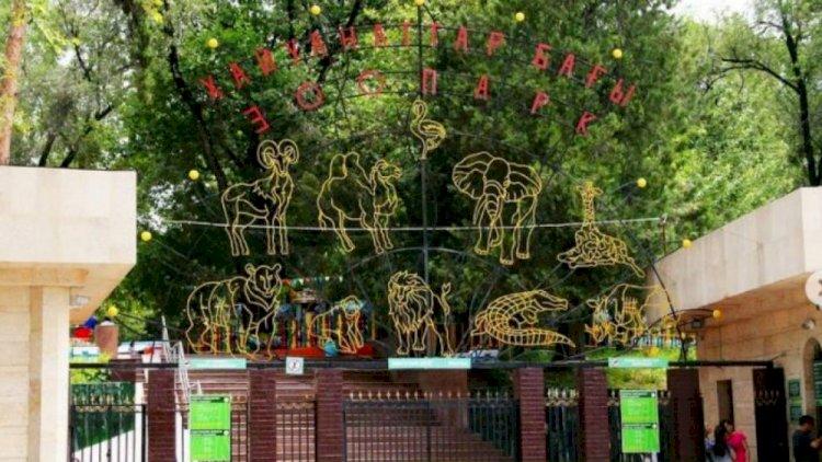 Алматинский зоопарк опубликовал архивные снимки