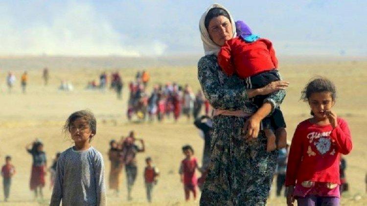 ЕC поможет Таджикистану построить лагерь для афганских беженцев